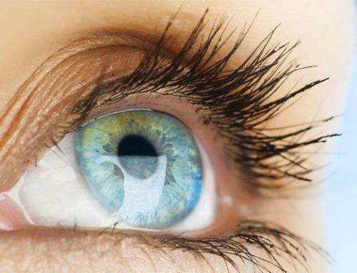 Zien – het oog bedrogen